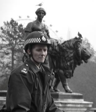 Mounterdf Police at Budkingham