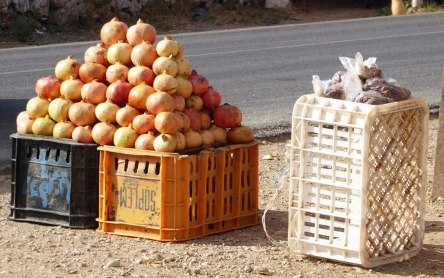 Roadside fruit